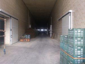 تصویر نصب ساندویچ پانل سردخانه 20000 تنی 44